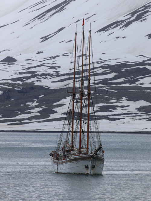 A tall ship at anchor in an arctic bay in the Svalbard archipelago