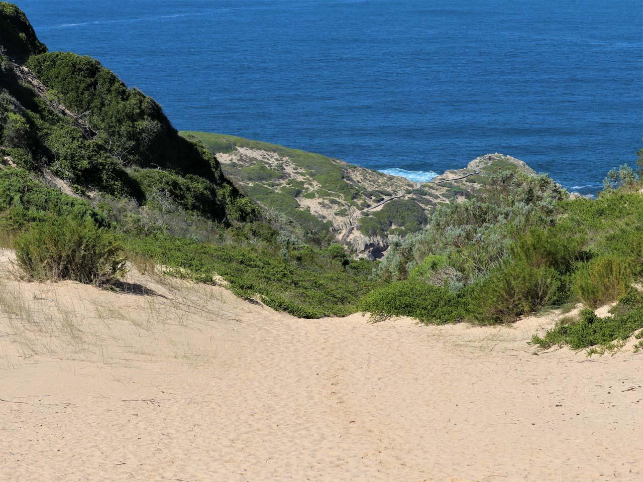Witsand dunes, Robberg.